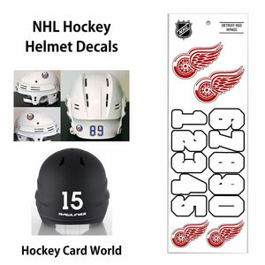 Detroit Red Wings (WHITE) NHL Hockey Helmet Decals Sticker Sheet