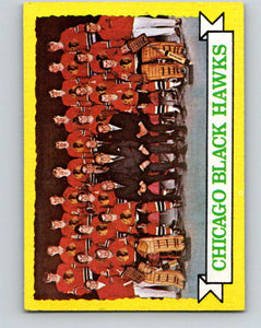 1973-74 Topps #96 Blackhawks Team  Chicago Blackhawks  V16657