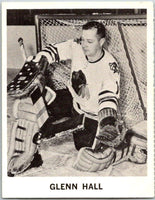 1965-66 Coca-Cola #19 Glenn Hall  Chicago Blackhawks  X0028
