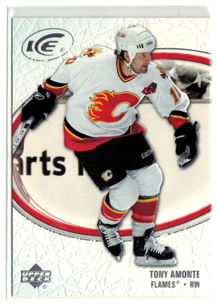 2005-06 Ice #17 Tony Amonte MINT Hockey NHL Flames