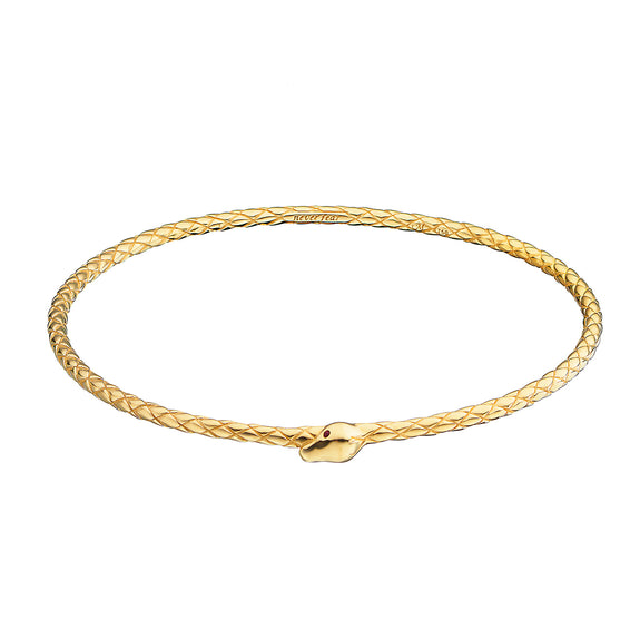 """Never Fear"" Snake Poesy Bangle"