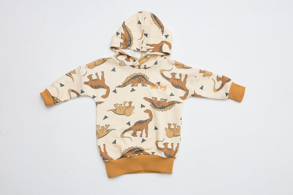 Hoodie | Little Mighty Dinosaurs