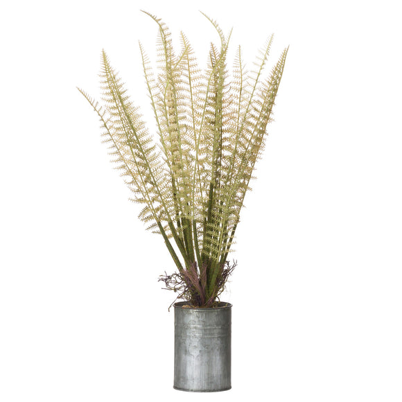 Faux Tin Can Fern