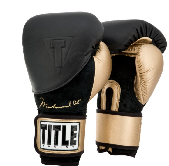 ALI LEGACY TRAINING GLOVES