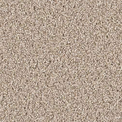 Star Struck Carpet | Multiple Colours Carpet - Jordans Flooring