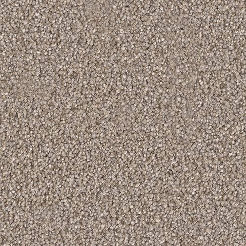 Starstruck Carpet | Multiple Colours Carpet - Jordans Flooring