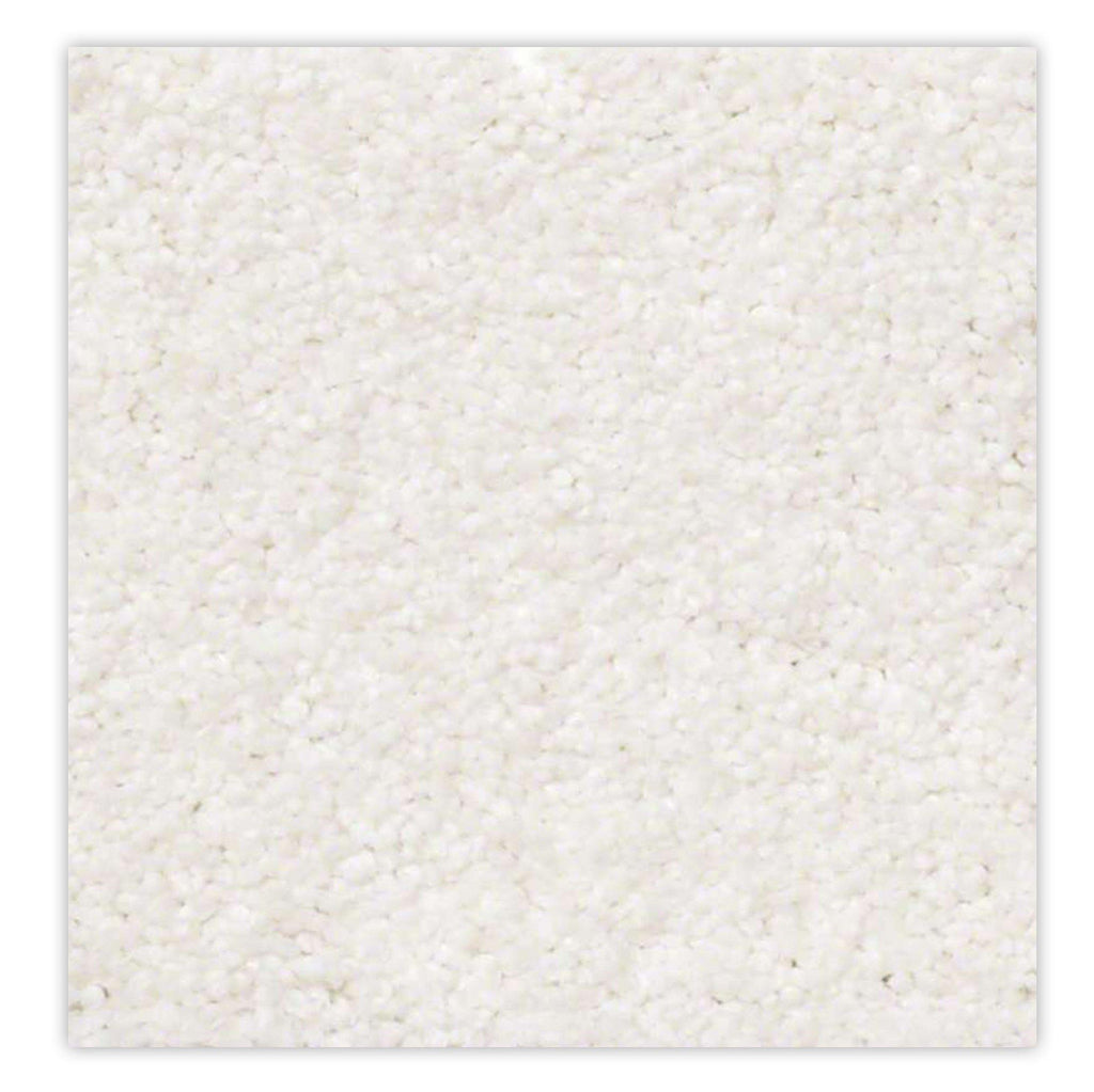 Belmont Stainmaster Carpet - Casual White Carpet - Jordans Flooring