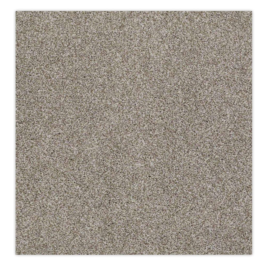 Belmont Stainmaster Carpet - Demure Taupe, Carpet - Jordans Floor Covering