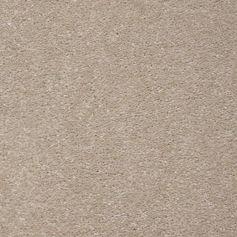 Enchanted Carpet - Champange Carpet - Jordans Flooring