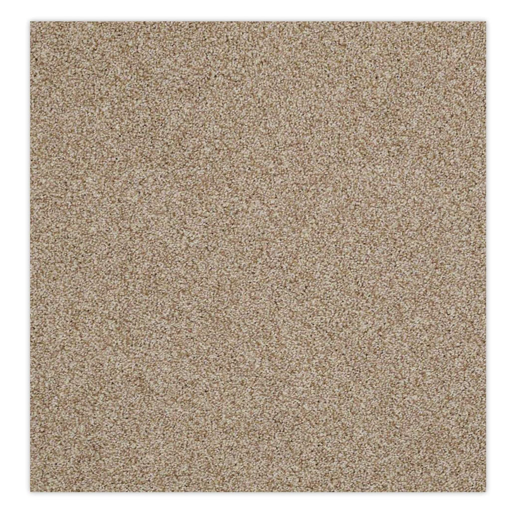 Belmont Stainmaster Carpet - Mr. Sandman Carpet - Jordans Flooring