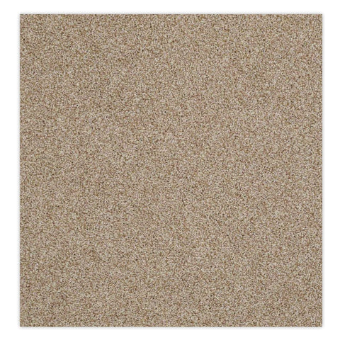 Belmont Stainmaster Carpet - Mr. Sandman, Carpet - Jordans Floor Covering