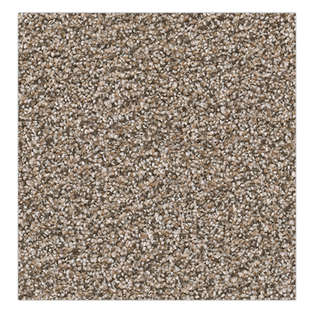 Sensational Carpet - Salt & Pepper Carpet - Jordans Flooring