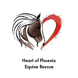 Heart of Phoenix Equine Rescue - UGP Client Case Study