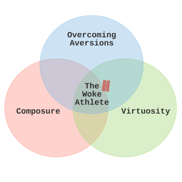 The 3 Pillars Of Your Athletic Success
