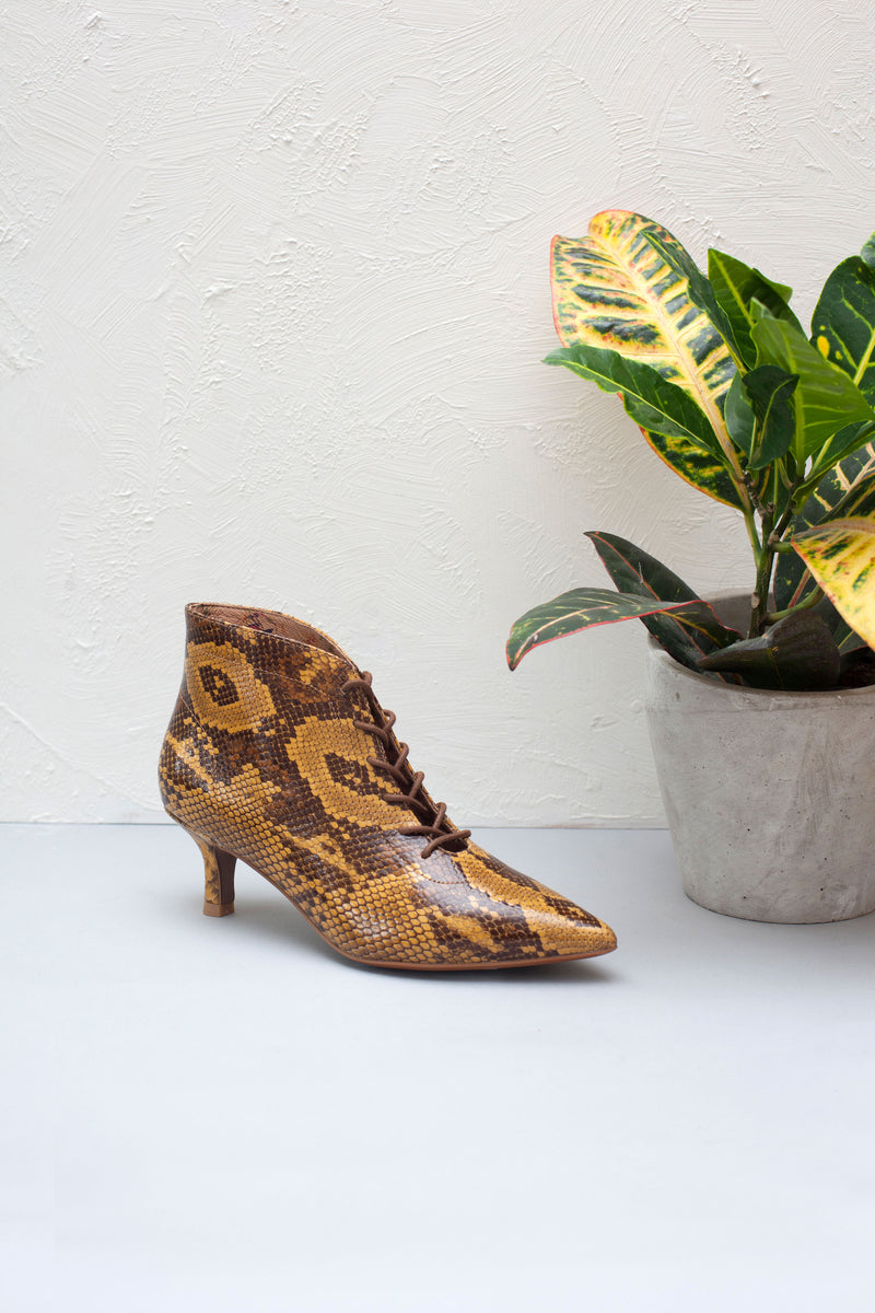 Kitty snake print leather kitten heel bootees with lace up fastening. By Designer Miss L Fire