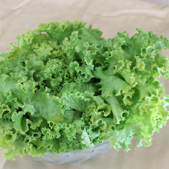 Green Leaf Lettuce (full head)