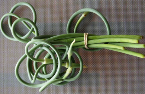 Organic Garlic Scapes (5 pcs)