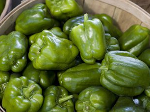 Green Bell Peppers (Lg Size)