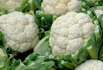 Cauliflower (med heads)