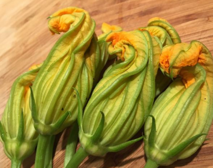 Squash Blossoms (6 ct)