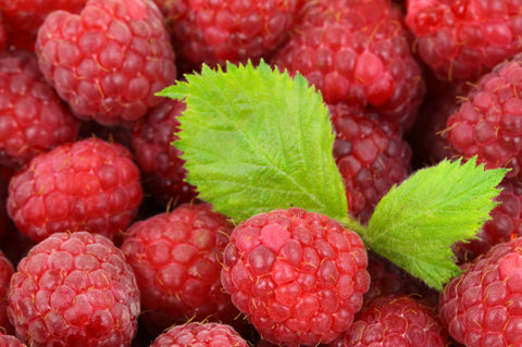 Red Raspberries - 1 Quart
