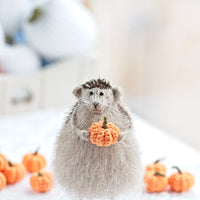 cute hedgehog gift