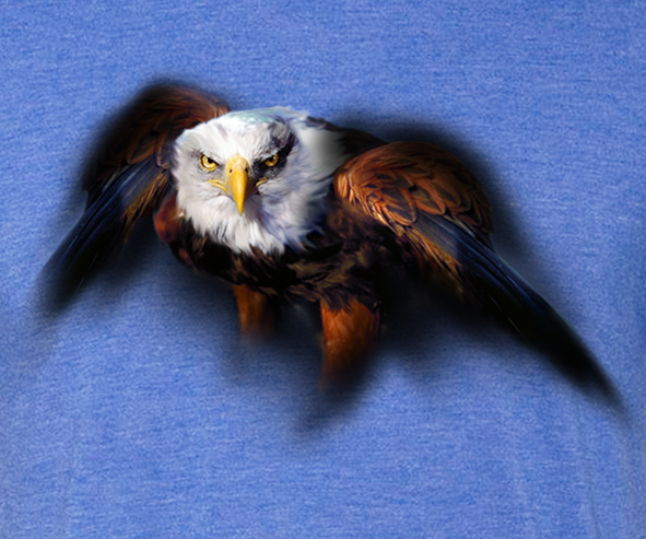 Bald Eagle Guardian T-shirt