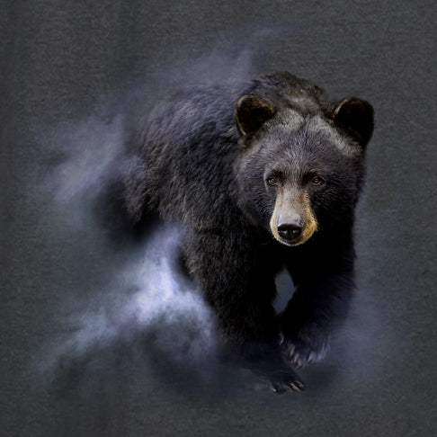 Black Bear in the Mist by Robert Campbell - painting of black bear walking through mist
