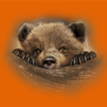Claws - painting of a bear cub peeking over a log