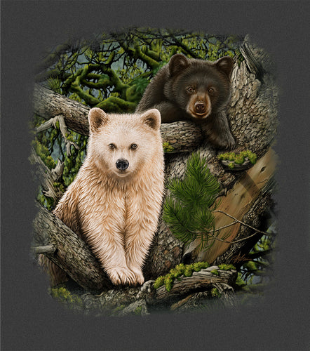 Kermode Brothers- painting of 2 bear cubs in a tree