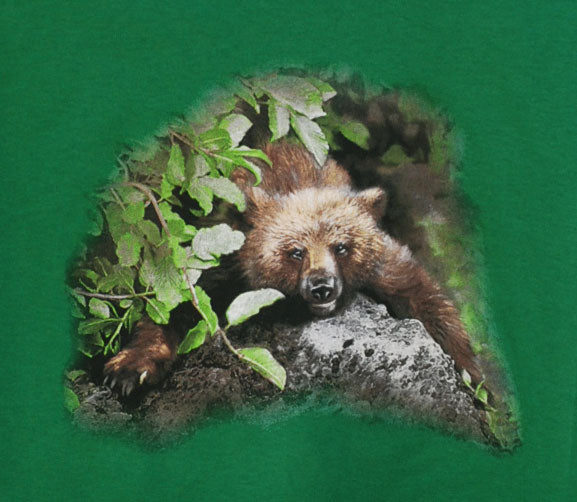 Lazy Bear - painting of a bear cub lying on a rock