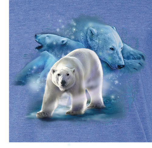 Northern King Bear T-shirt - Youth