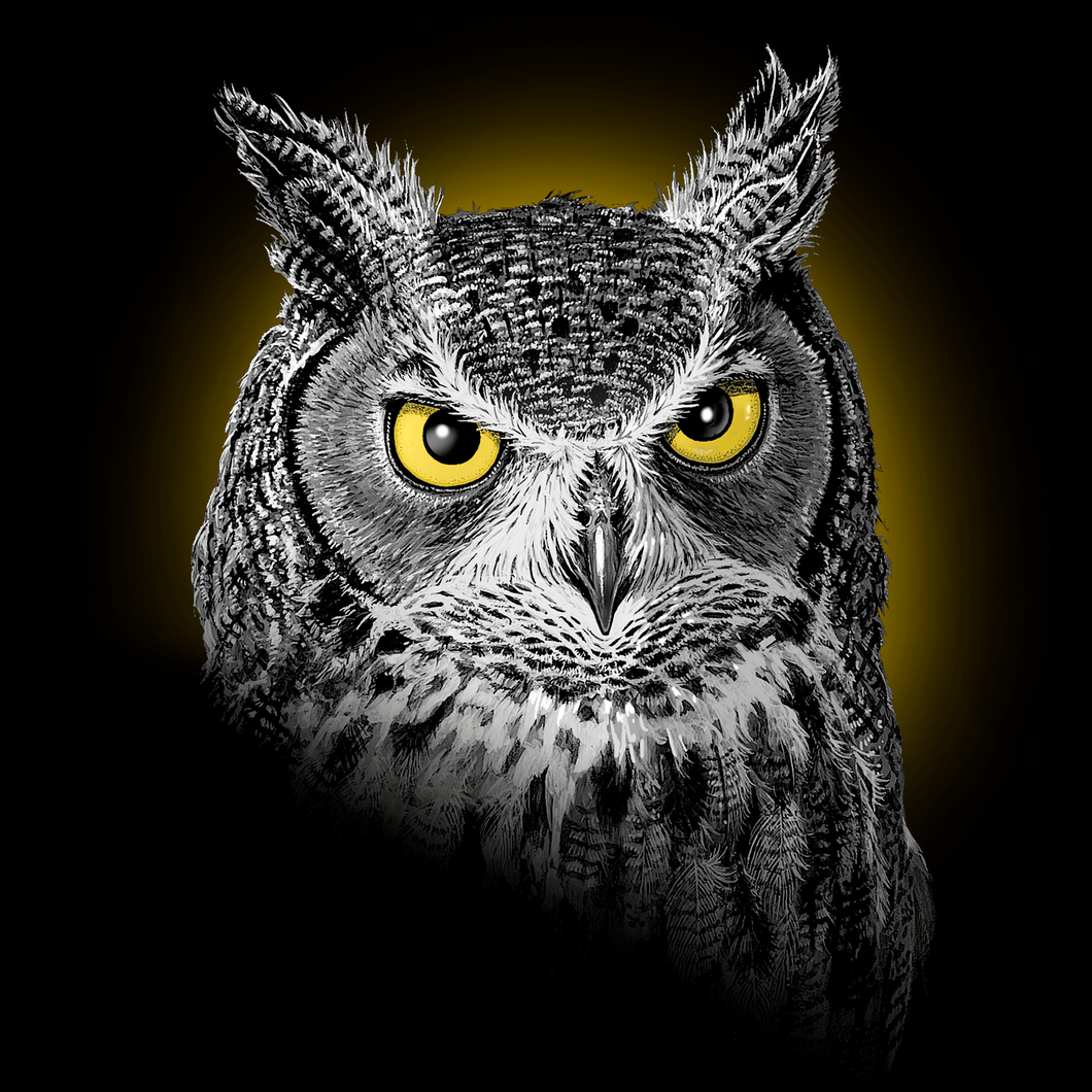 Owl Portrait T-shirt
