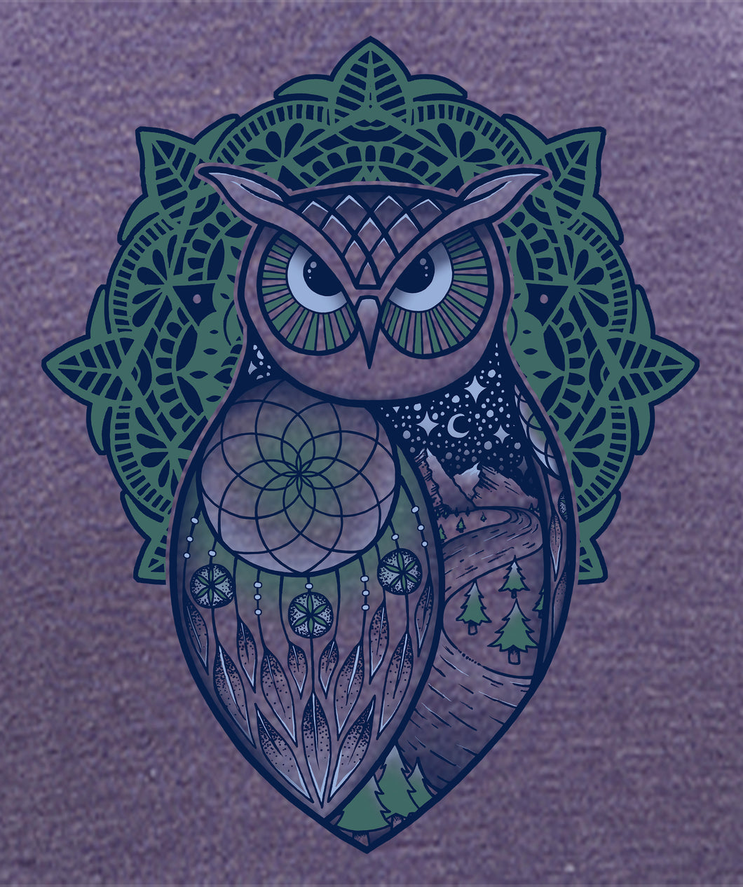 Spirit Owl- artwork of an owl with a dreamcatcher design in the wing