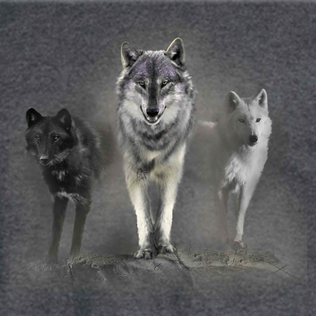 Wolf Tribute by Robert Campbell - painting of 3 wolves standing on a cliff looking out