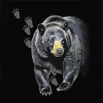 Bear Trax - painting of black bear with paw print tracks