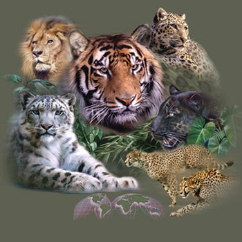 Big Cats- design featuring exotic cats including lion, tigers, cheetah and panther