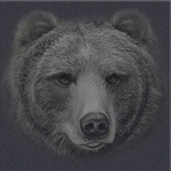 Grizzly Profile With Paw - painting of large portait of grizzly face