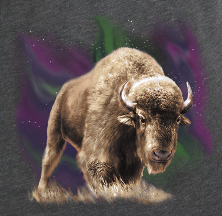 Light Show Bison- Artwork of bison standing under the northern lights