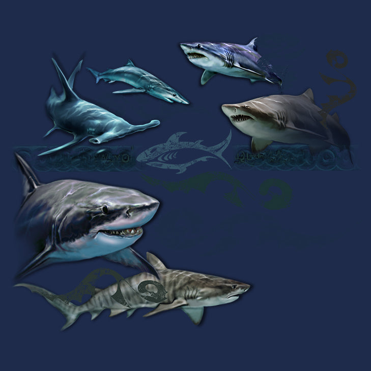 Shark Tattoo- painting of several different kinds of sharks