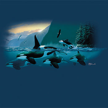 Sunset Orcas - painting of a pod of orcas swimming along the coast