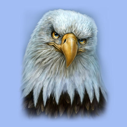Eagle Totem by Patrick LaMontagne - painting of an eagle with attitude