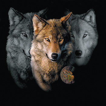 Wolf Trilogy by Robert Campbell -  Painting of three wolf heads with paw imprint