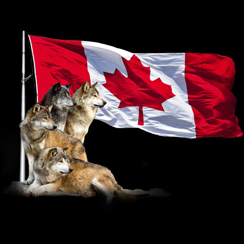 Wolf Flag - painting of 4 wolves staring into the distance in front of Canadian Flag