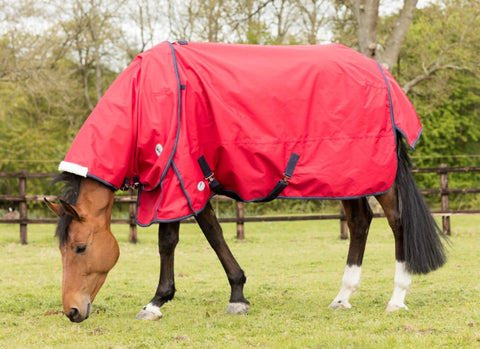 JHL Lightweight Turnout Rug