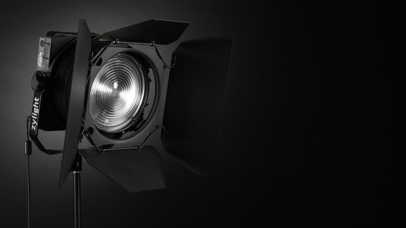 Zylight F8-100 Daylight Studio Kit (5600K)