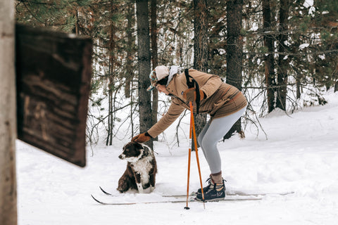 5-ways-to-stay-fit-winter-cross-country-nordic-skiing