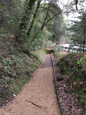 hiking-health-heart-trail-7-path