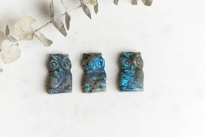 Labradorite Owl- Transformation