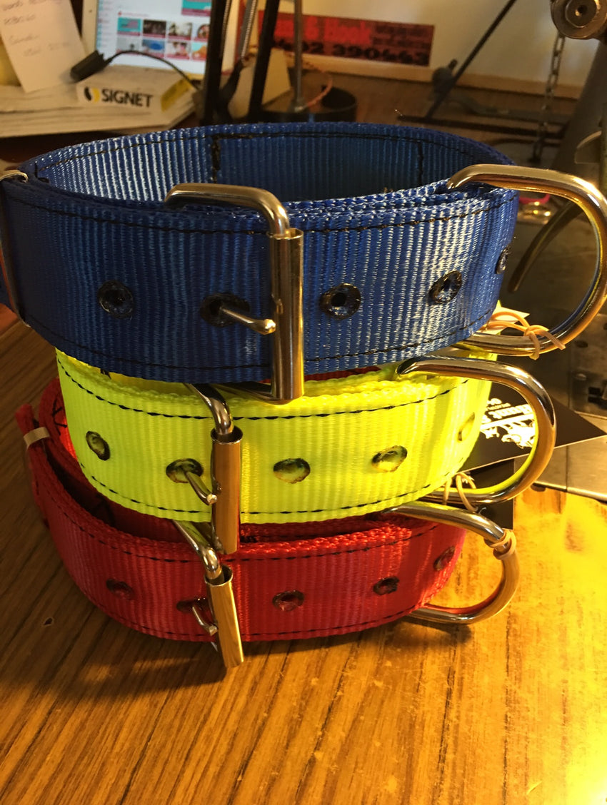 "Steel yard collars ""Pro Tactical Pitbulls Australia"""